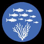 fisheries-management